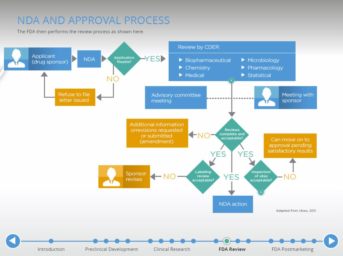 FDA NDA Approval Process Interactive Infographic Example